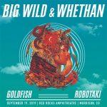 Big Wild / Whethan
